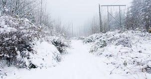 有醉汉的积雪的道路 影视素材