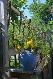 有野花的蓝色花瓶在庭院里 图库摄影