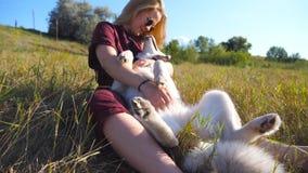 有金发的少女坐草在领域和爱抚她的西伯利亚爱斯基摩人 美丽的太阳镜妇女 股票视频