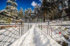有金属栏杆和杉木森林的桥梁在winte的白色雪的 免版税库存图片