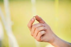有金戒指的人的手在婚礼 库存图片