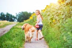 有金毛猎犬的小女孩 库存图片