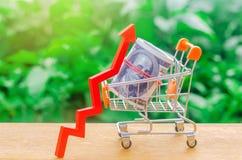 有金钱和箭头的购物车 成长的概念在购买力的 对便宜的贷款或短期贷款的扩大需求 库存照片