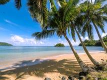 有金黄沙子,棕榈树的田园诗热带海滩天堂和 免版税库存照片