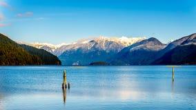 有金黄耳朵的雪加盖的峰顶,兴奋峰顶和周围的海岸山脉的其他山峰的Pitt湖 免版税库存照片