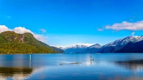 有金黄耳朵的雪加盖的峰顶,兴奋峰顶和周围的海岸山脉的其他山峰的Pitt湖 免版税库存图片