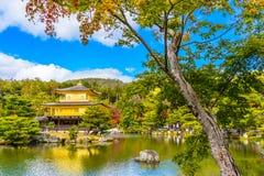 有金黄pavillion的美丽的Kinkakuji寺庙在京都日本 库存图片