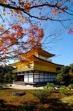 有金黄亭子的红色叶子在京都 免版税库存照片