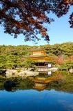 有金黄亭子的红色叶子在京都 库存照片