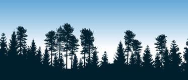 有针叶树的美丽的无缝的传染媒介森林 库存照片