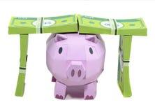 有钞票的猪银行 免版税库存照片