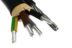 有钢索的铝电力电缆装置在边作为支持,报道在黑PVC夹克,内部米黄绝缘材料 图库摄影