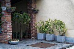 有钢门的,花意大利后花园填装了墙壁篮子和花盆 库存照片