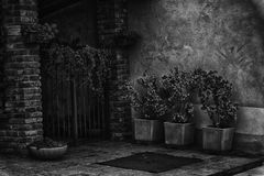 有钢门的,花意大利后花园填装了墙壁篮子 免版税库存照片