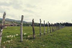 有铁丝网的木篱芭与对此的绵羊羊毛在一个动物农场在国家 免版税图库摄影