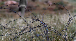 有铁丝网的篱芭在被弄脏的背景 特写镜头 免版税图库摄影