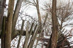 有铁丝网的老打破的篱芭 免版税图库摄影