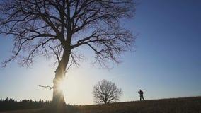 有铁锹的农夫走在领域的 他们运载种植的树设备 在日落 侧视图 股票录像