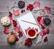 有铅笔的笔记本,红色秋叶,莓果荚莲属的植物,装饰球由藤条秋天装饰做成在木铁锈 免版税图库摄影