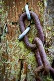 有链子和铁丝网的老门岗位 免版税库存图片