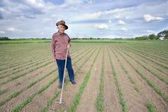 有锄的农民在领域 库存图片