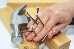 有锤子和钉子的妇女手 免版税库存图片