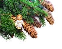 有锥体的圣诞节云杉的在白色的枝杈和天使 库存图片
