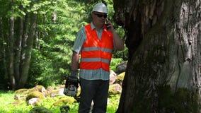 有锯的伐木工人谈话在smarth电话在老树附近 股票视频