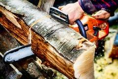 有锯的伐木工人 库存照片