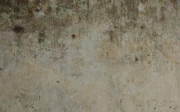 有镇压和削皮油漆的老墙壁 免版税库存照片