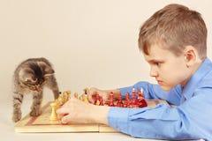 有镶边小猫的年轻高段棋手下棋 免版税库存照片