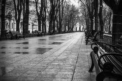 有长凳的公园胡同在秋天 免版税库存照片