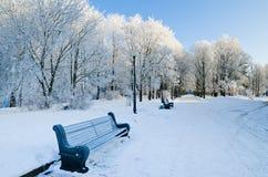 有长凳的城市公园 库存图片