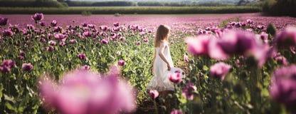 有长发的可爱的女孩在白色礼服偏僻走在淡紫色鸦片花田 免版税库存图片
