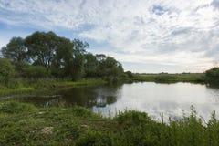 有长得太大的绿色银行和云彩的一个美丽如画的池塘在蓝天 库存图片