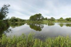 有长得太大的绿色银行和云彩的一个美丽如画的池塘在蓝天 图库摄影