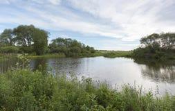 有长得太大的绿色银行和云彩的一个美丽如画的池塘在蓝天 免版税库存照片