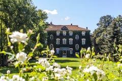 有长得太大的门面的乡间别墅在有白花的庭院里 库存图片