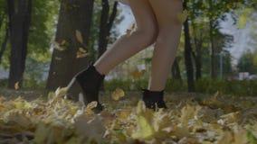 有长期的年轻美丽的女孩和运行通过秋叶的被定调子的腿在一个公园在慢动作的一个晴天- 影视素材
