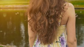 有长期,美丽和卷发的一个女孩反对一个池塘的背景在公园 头发特写镜头 肉欲女孩 库存图片