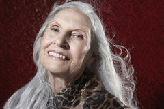 有长灰色头发微笑的资深妇女 免版税库存照片