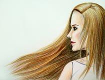 有长的健康头发的美丽的女孩 风 免版税库存图片