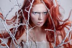 有长的头发、用雪盖的面孔与霜白色眼眉和睫毛的红头发人女孩在霜,报道的树枝 库存图片