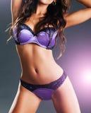 有长的头发的华美的性感的妇女在女用贴身内衣裤 库存图片