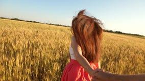 有长的头发的女孩横跨领域跑用麦子,举行人` s手和笑 慢的行动 股票录像
