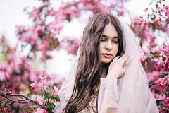 有长的头发的女孩用面纱报道了他的头,看下来在桃红色樱花背景  免版税图库摄影