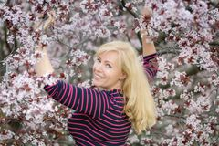 有长的头发近的开花的李子樱桃树的愉快的微笑的白种人白肤金发的妇女,有一点向后看在照相机, 库存照片