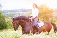 有长的头发骑乘马的女孩在领域 免版税库存图片