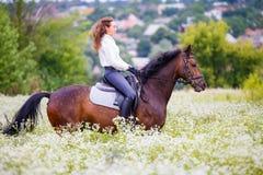 有长的头发骑乘马的女孩在领域 库存照片