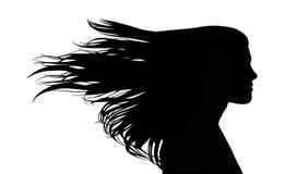 有长的海峡头发的妇女在风 皇族释放例证